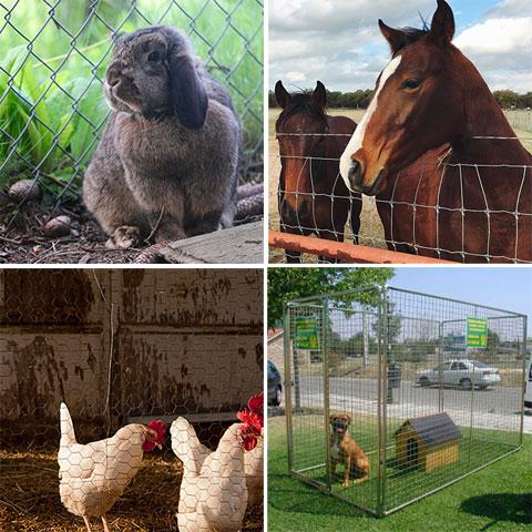las vallas y los animales